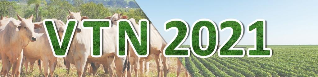 Vtn 2021